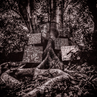 Kamasi Washington / Harmony of Difference