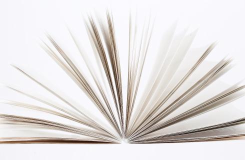 デルフォニックスダイアリーの紙と製本
